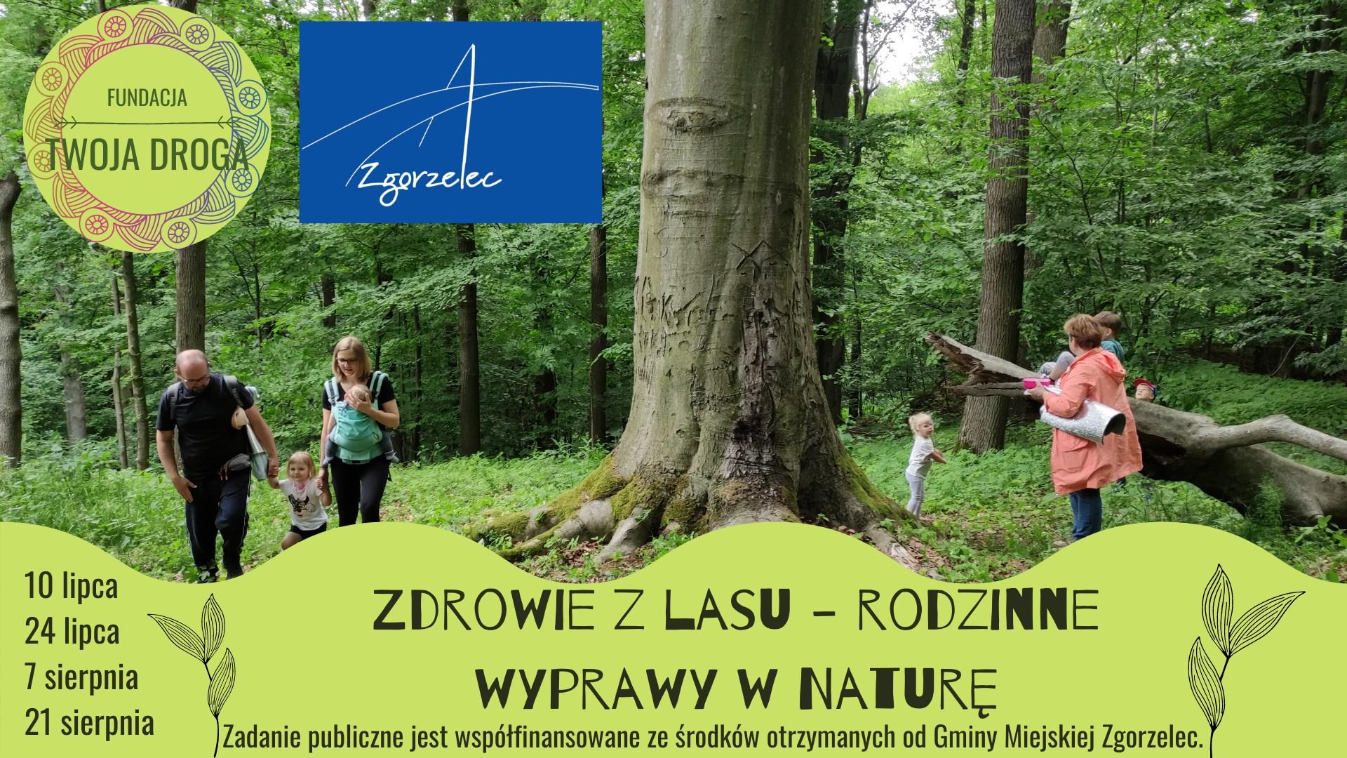 Zdrowie z lasu - rodzinne wyprawy w naturę